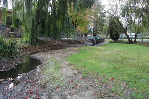 Former duck pond on Calder Creek in Ives Park, Sebastopol