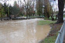 Ives pond at flood stage