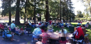 Sebastopol Community Band at Ives Park, July 4, 2011 (Terry Kelly)