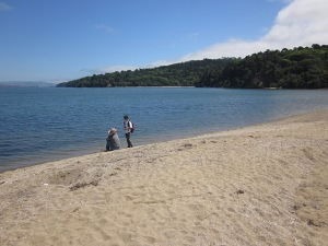 Indian Beach, Tomales Bay State Park